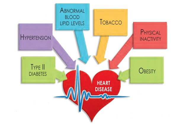 Image result for risk factors of heart disease